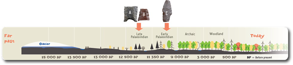 Artifacts A and B represent two Clovis fluted point fragments dating from the Early Palaeoindian period.